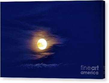 Full Moon With Clouds Canvas Print by Thomas R Fletcher