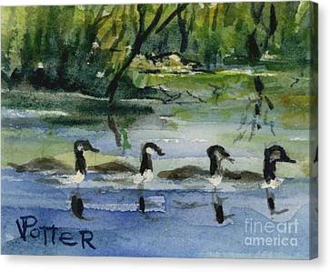 Geese In A Row Aceo Canvas Print by Virginia Potter