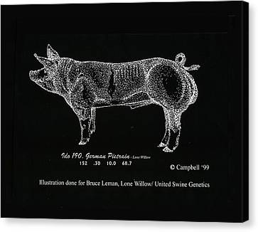 Canvas Print featuring the drawing German Pietrain Boar by Larry Campbell