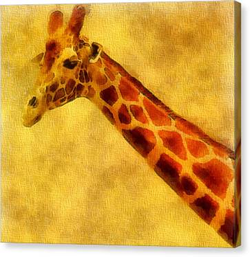 Giraffe Painting Canvas Print by Dan Sproul