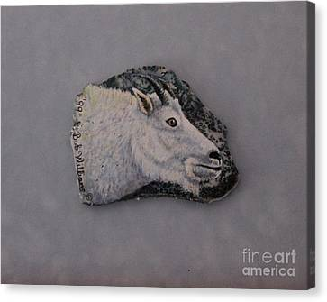 Glacier Park Mountain Goat Canvas Print