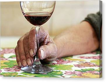 Glass Of Red Wine Canvas Print by Mauro Fermariello