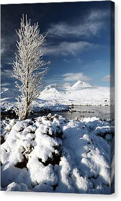 Glencoe Winter Canvas Print by Grant Glendinning
