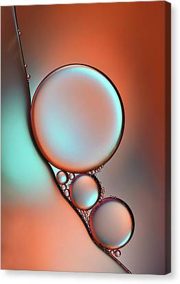 Glimmer Canvas Print by Heidi Westum