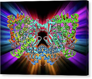 Glycogen Phosphorylase Molecule Canvas Print by Laguna Design