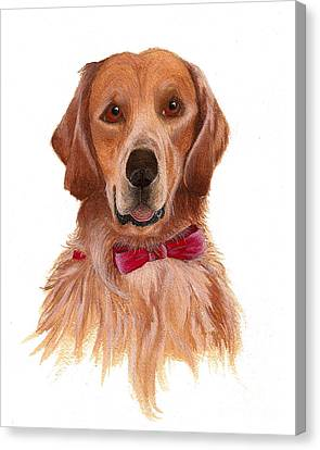 Canvas Print featuring the painting Golden Labrador by Nan Wright