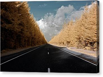 Canvas Print featuring the photograph Golden Road by David Stine