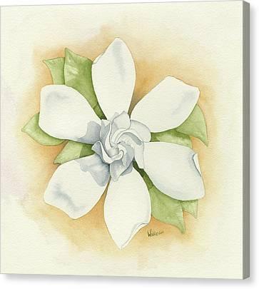 White Gardenia Canvas Print - Graceful Symmetry by Brett Winn