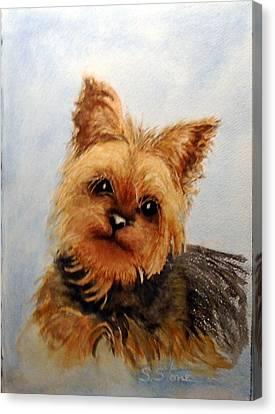 Gracie Canvas Print by Sandra Stone