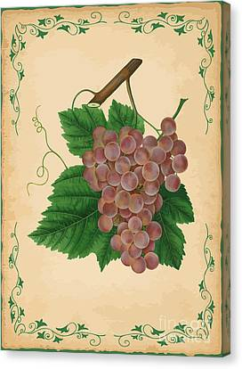 Grapes Illustration Canvas Print by Indian Summer