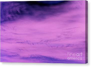 Canvas Print featuring the photograph Gravity Pull by Jamie Lynn