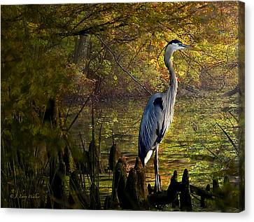 Canvas Print featuring the digital art Great Blue Heron Wading by J Larry Walker