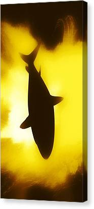 Water Canvas Print featuring the digital art Great White  by Aaron Berg