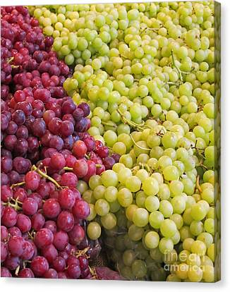 Green And Red Seedless Grapes Art Prints Canvas Print by Valerie Garner