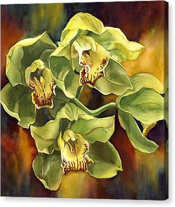 Alfred Ng Art Canvas Print - Green Cymbidium Orchid by Alfred Ng