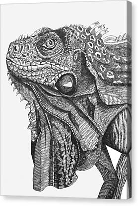 Green Iguana Canvas Print by Tracey Gurr BA Hons