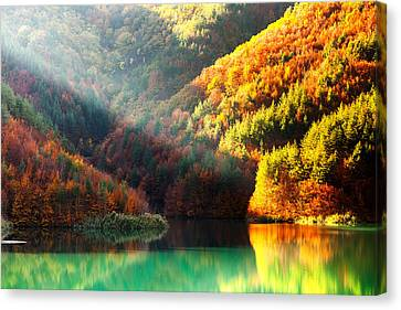 Green Lake Canvas Print by Evgeni Dinev