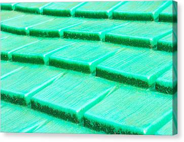 Green Plastic Canvas Print by Tom Gowanlock