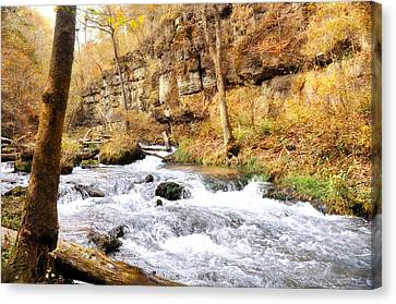 Canvas Print - Greer Spring In Fall by Marty Koch