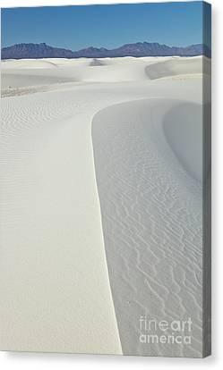 Gypsum Dunes In White Sands Canvas Print