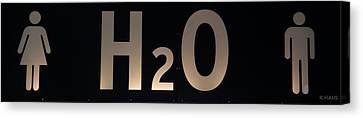 H2O Canvas Print by Rob Hans