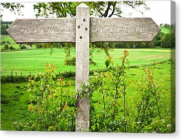Hadiran's Wall Path Canvas Print by Tom Gowanlock