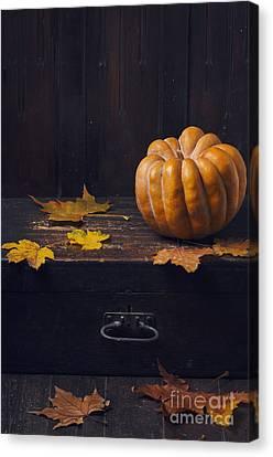 Halloween Pumpkin Canvas Print by Jelena Jovanovic