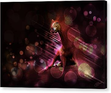 Hallucination Canvas Print by Kate Black