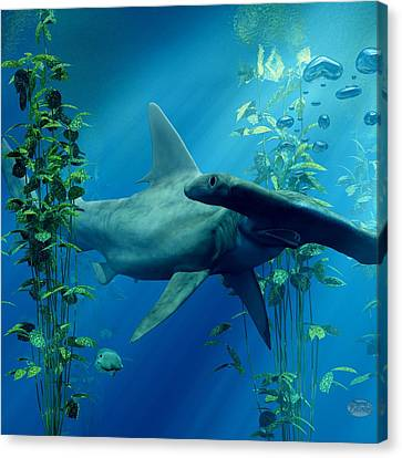 Daniel Canvas Print - Hammerhead by Daniel Eskridge
