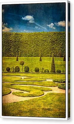 Hampton Court 'the Privy Garden Canvas Print by Lenny Carter