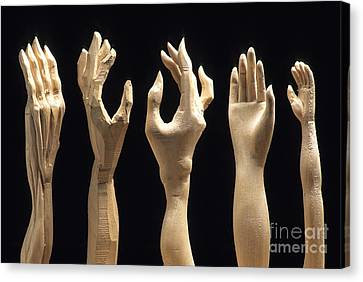 Woodcarving Canvas Print - Hands Of Wood Puppets by Bernard Jaubert