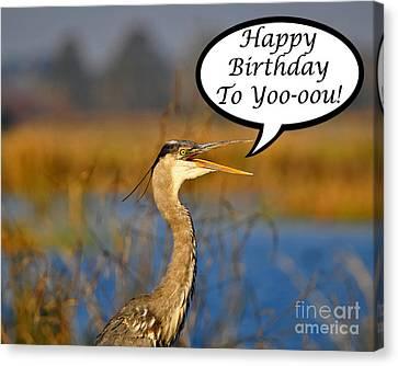 Happy Heron Birthday Card Canvas Print by Al Powell Photography USA