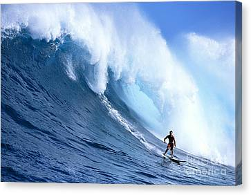 Hawaii, Maui, Jaws, Sierra Emory Looks At Camera, In Front Of Large Wave Canvas Print by Erik Aeder