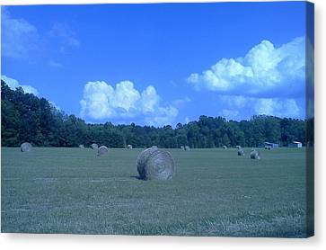 Haystacks Canvas Print by Stacy C Bottoms