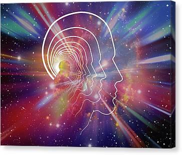 Human Head Canvas Print - Head Contour Lines by Alfred Pasieka