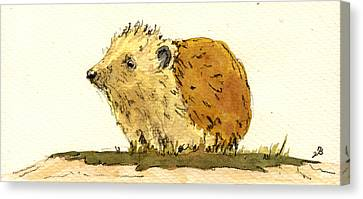 Hedgehog Canvas Print by Juan  Bosco