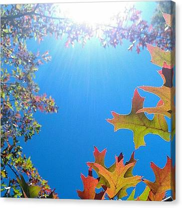Hello Autumn Canvas Print