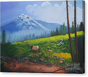 High Country Elk  Canvas Print by Ruth  Housley