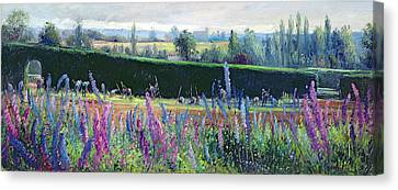 Hoeing Against The Hedge Canvas Print by Timothy Easton