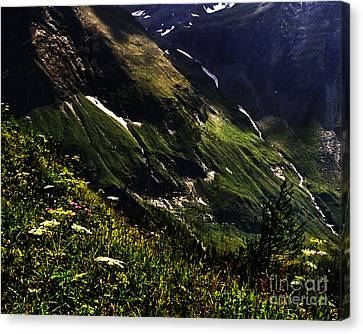 Hohe Tauern National Park Austria Canvas Print