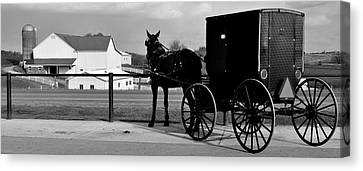 Horse And Buggy And Farm Canvas Print