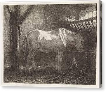 Horse In Stable, Jan Vrolijk Canvas Print by Jan Vrolijk