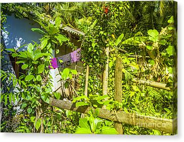 House In Green Jungle Canvas Print by Regina Koch