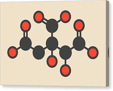 Hydroxycitric Acid Molecule Canvas Print