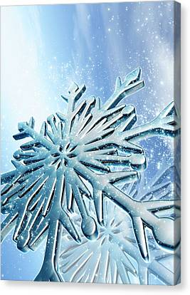 Ice Crystals Canvas Print by Victor Habbick Visions