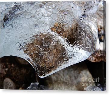Ice Canvas Print by Fabian Roessler