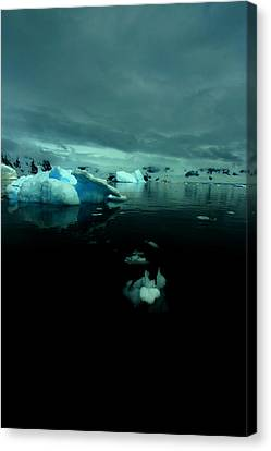 Canvas Print featuring the photograph Icebergs by Amanda Stadther