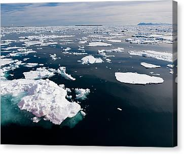 Icebergs, Hinlopen Strait, Spitsbergen Canvas Print by Panoramic Images