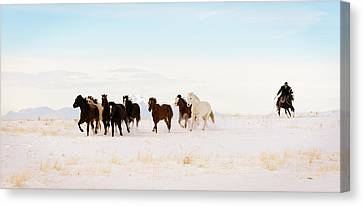 Iconic Wild  Horse Roundup In Winter Months  Canvas Print by Kriss Russell