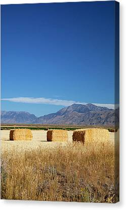 Bales Canvas Print - Idaho, Butte County, Hay Bales by Jamie and Judy Wild